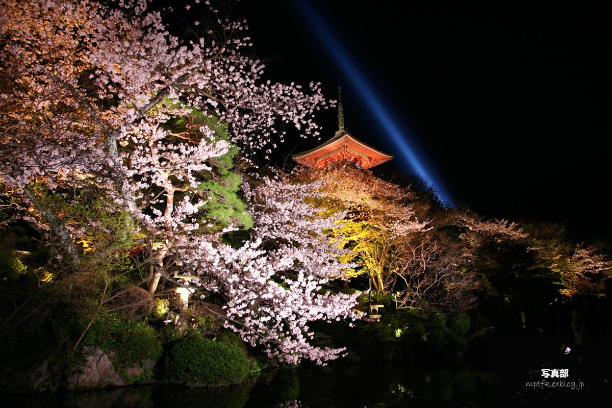 清水寺 桜ライトアップ_f0021869_18235326.jpg