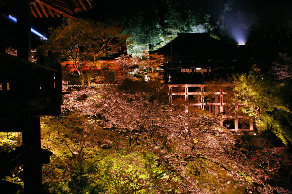 清水寺 桜ライトアップ_f0021869_1826582.jpg