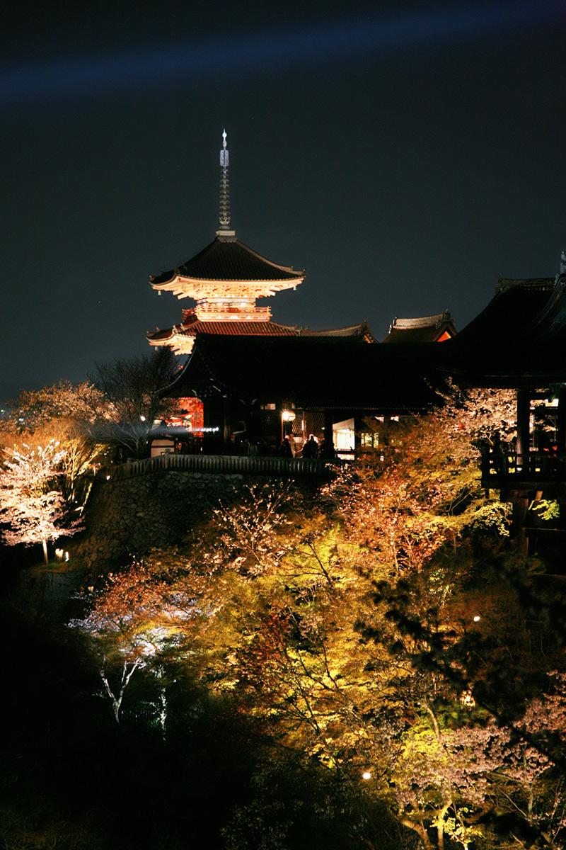 清水寺 桜ライトアップ_f0021869_18305376.jpg