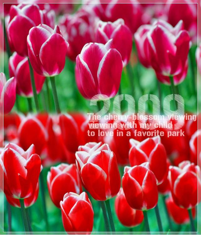 f0060689_12481861.jpg