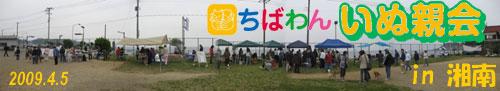 第55回ちばわん いぬ親会 in湘南(第5回) ご報告_d0027698_104485.jpg