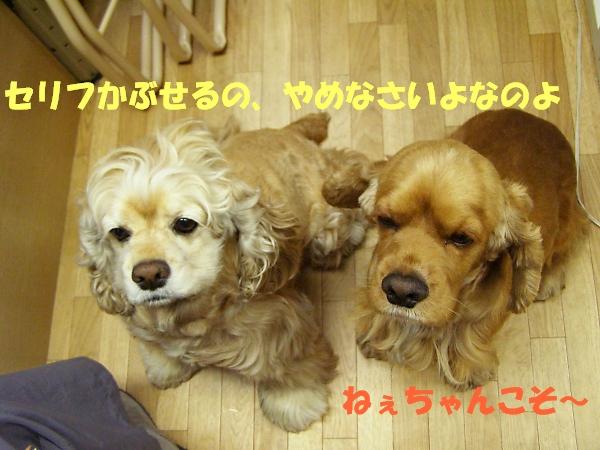 b0067012_0211962.jpg