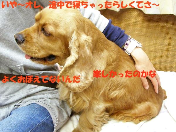 b0067012_035889.jpg
