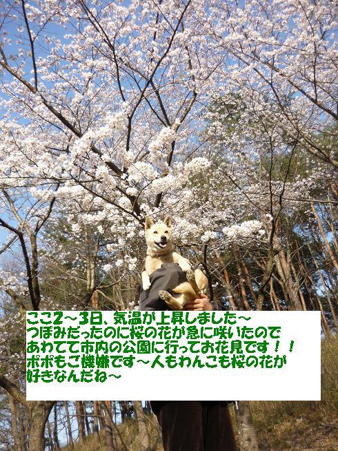 e0139167_0767.jpg
