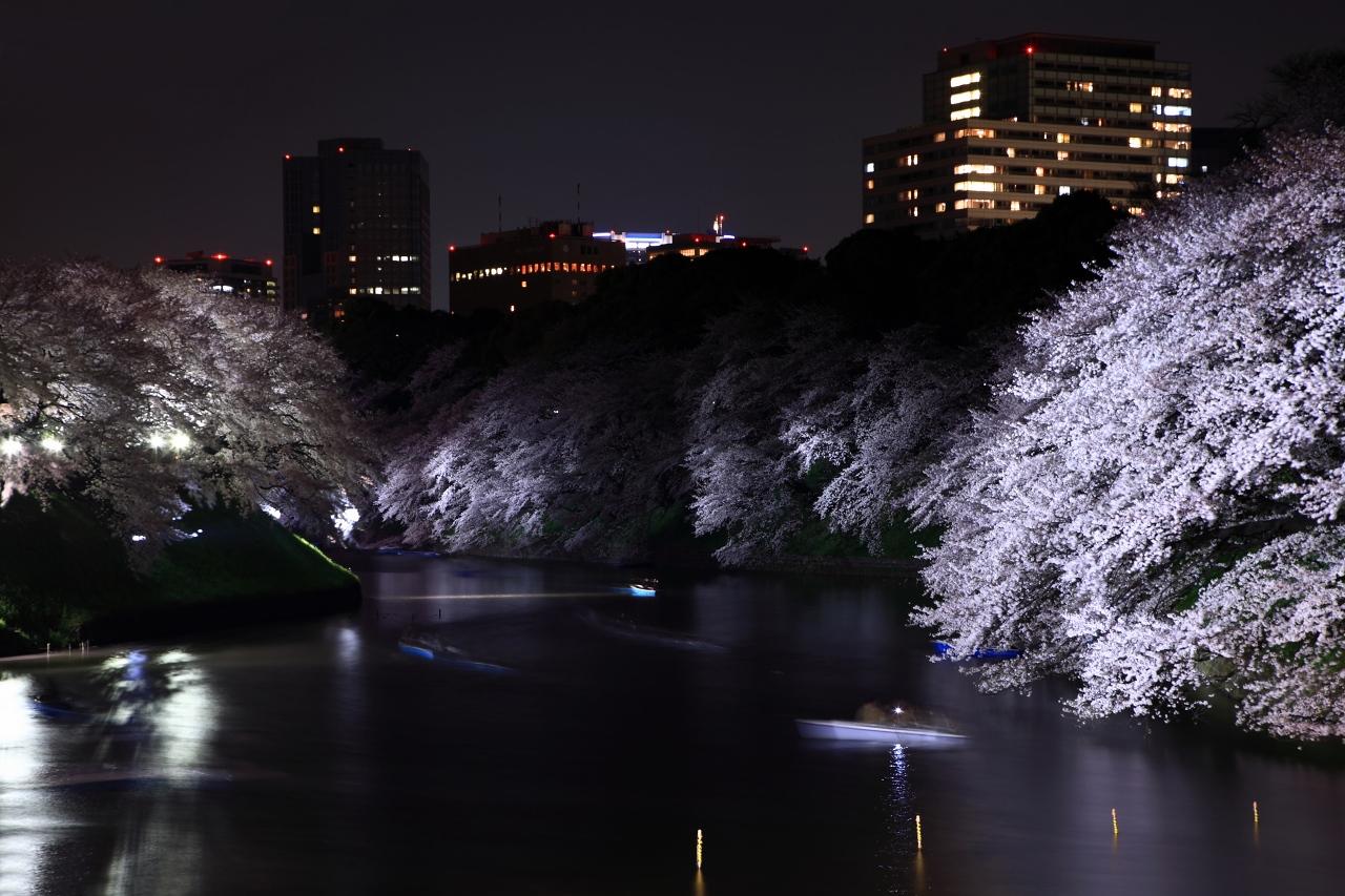 千鳥ヶ淵 夜桜ライトアップ_e0001789_119359.jpg