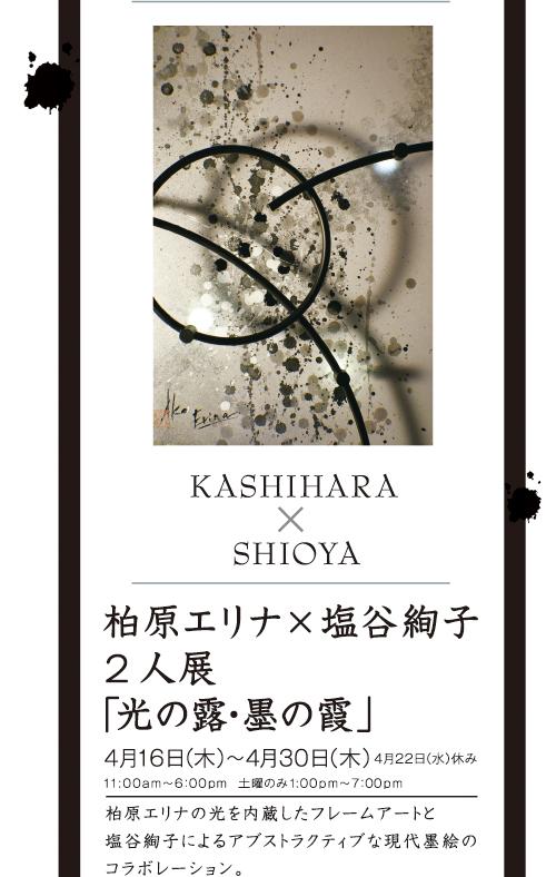 桜満開_f0143397_104592.jpg