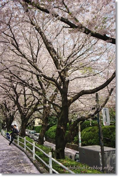 タコと蓮根とそらまめのわさびマヨサラダ と 鮪丼_f0179404_19473827.jpg