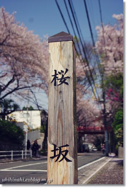 タコと蓮根とそらまめのわさびマヨサラダ と 鮪丼_f0179404_19474895.jpg