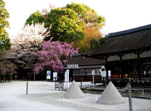世界遺産 上賀茂神社_e0048413_2055184.jpg