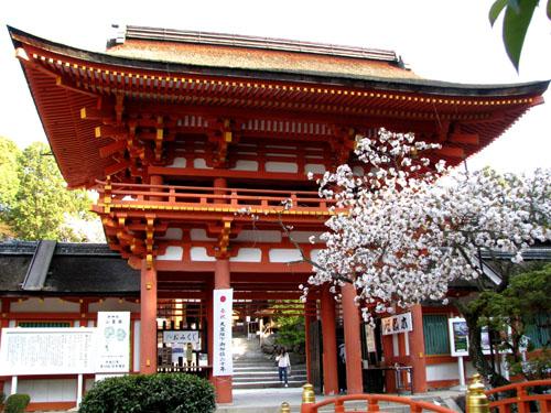 世界遺産 上賀茂神社_e0048413_20553378.jpg