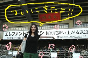 『桜の花舞い上がる武道館』!!_b0126653_352287.jpg