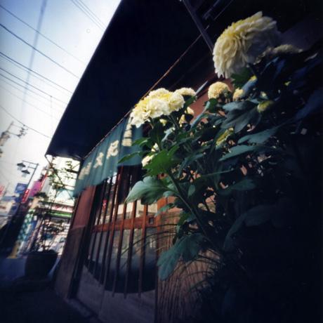 第9回世界ピンホール写真デー WPPD 浅草撮影会 Pinhole Photography_f0117059_1740286.jpg