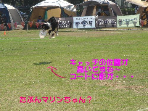 b0101991_033125.jpg