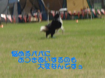 b0101991_624842.jpg