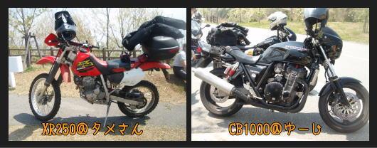 b0055202_1048781.jpg