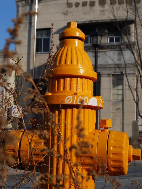 旧函館無尽本店、北洋相互銀行(函館末広町レトロ建築コレクション)_f0142606_21345052.jpg