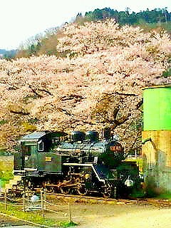 春、春、春!!_f0101226_0432434.jpg
