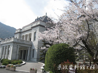 09年お花見~_c0150273_20251831.jpg