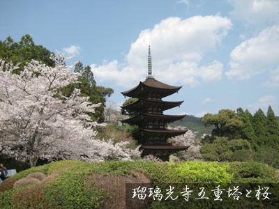 09年お花見~_c0150273_202576.jpg