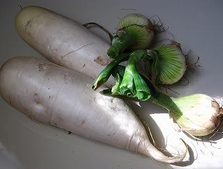 採れたて野菜_d0074474_15255718.jpg