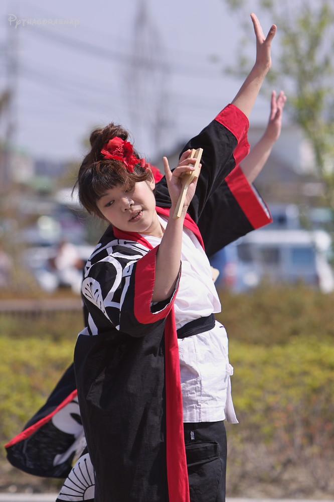 舞っとこ刈谷 2009_c0187584_16282996.jpg