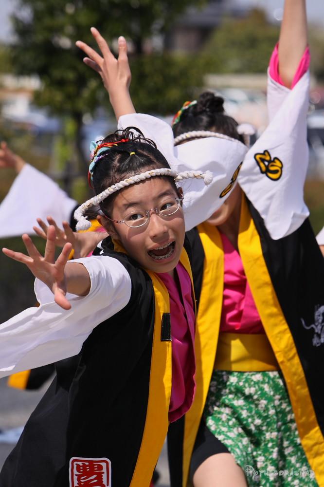 舞っとこ刈谷 2009_c0187584_16414647.jpg