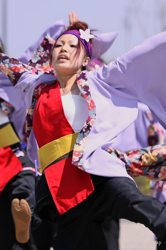 舞っとこ刈谷 2009_c0187584_16452949.jpg