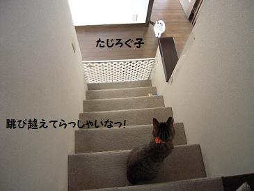 c0139488_0274564.jpg