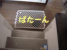 c0139488_0313019.jpg