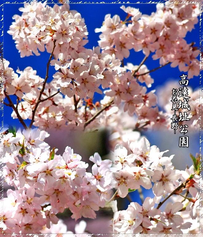 f0060689_16441891.jpg