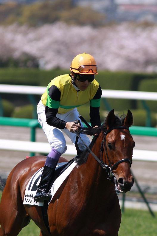 阪神牝馬S_f0204898_2025212.jpg