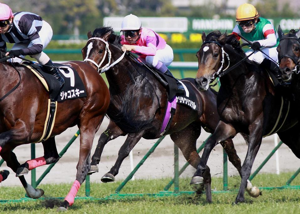 阪神牝馬S_f0204898_20252870.jpg