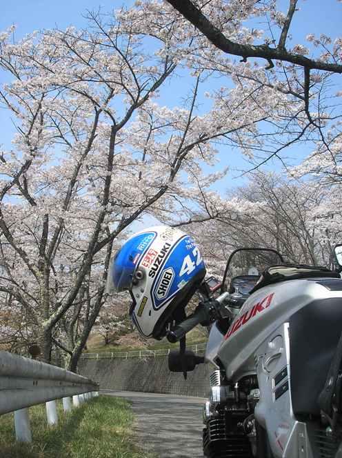 秩父の桜_d0115409_22154682.jpg