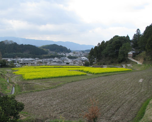奈良3明日香 岡寺_e0048413_22224591.jpg