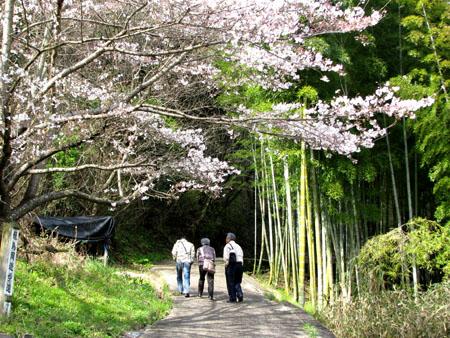 奈良3明日香 岡寺_e0048413_22225921.jpg