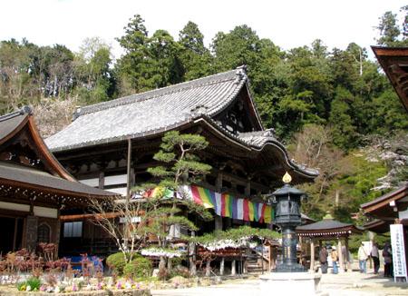 奈良3明日香 岡寺_e0048413_22232888.jpg