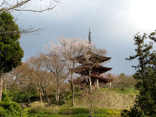 奈良3明日香 岡寺_e0048413_2223451.jpg