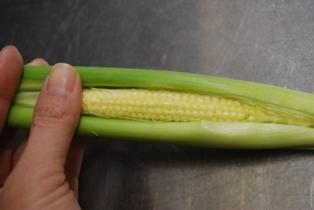 旬の野菜はいつも季節を届けてくれます♪_e0025817_208171.jpg