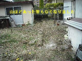 f0031037_2242628.jpg