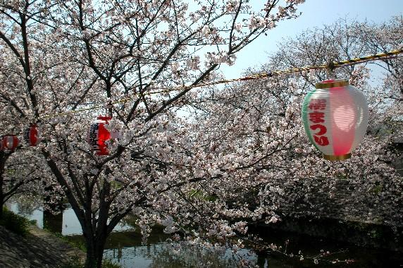 春爛漫_b0093754_01255.jpg