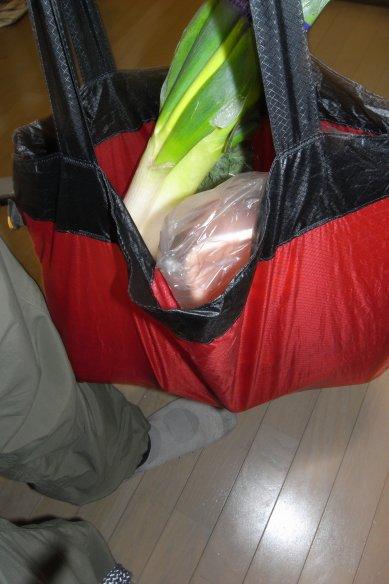 Ultra Sil Shopping Bag / SEA TO SUMMIT_e0024555_11134316.jpg