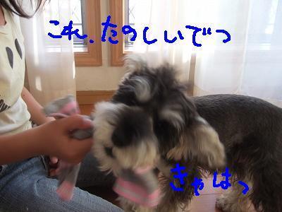 b0143879_16103834.jpg