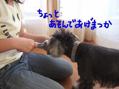 b0143879_1642280.jpg