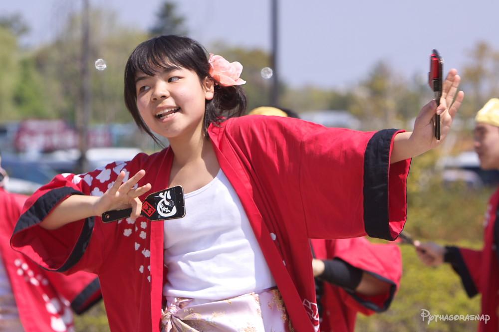 舞っとこ刈谷 2009:その2_c0187584_6252528.jpg
