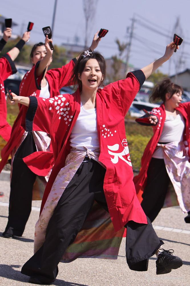 舞っとこ刈谷 2009:その2_c0187584_625349.jpg