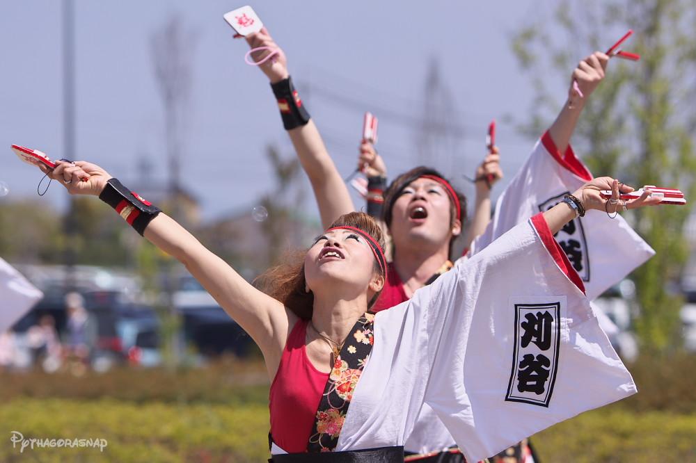 舞っとこ刈谷 2009:その2_c0187584_816447.jpg