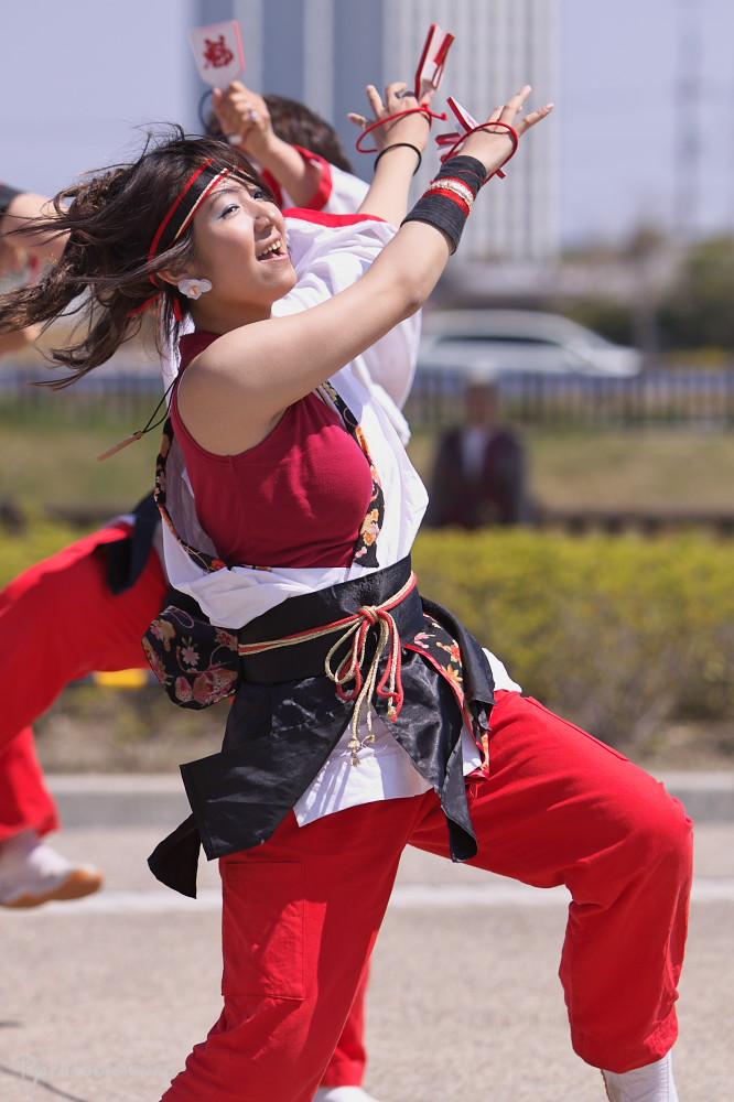 舞っとこ刈谷 2009:その2_c0187584_8181541.jpg