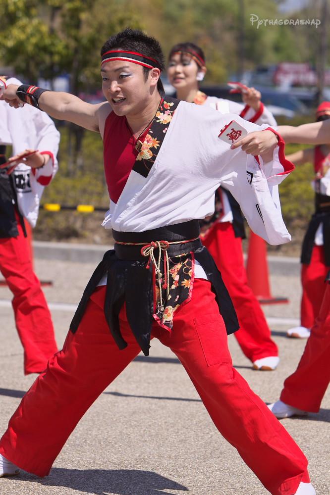 舞っとこ刈谷 2009:その2_c0187584_8211412.jpg