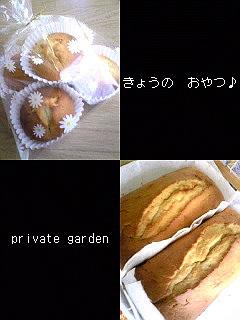 a0026089_97994.jpg