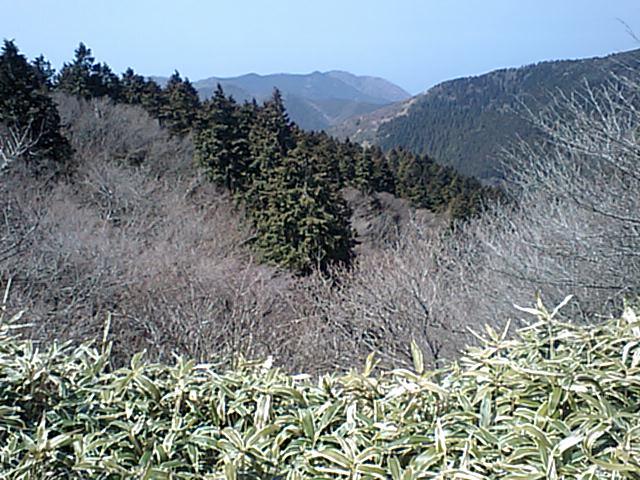 日本オオカミ協会!_e0056797_9565343.jpg